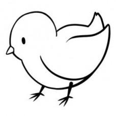 AA2016 - Small Bird
