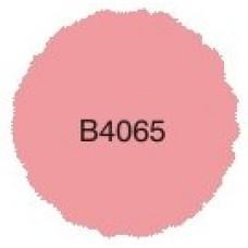 B4065 Reverse Image Stamp