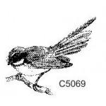 C5069 Fantail
