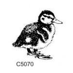 C5070 Duckling