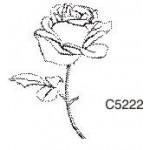 C5222 Rose