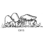 C613 Mushrooms