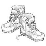 D6299 - Work Boots