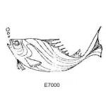 E7000 Fish