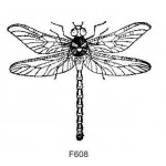 F608 Dragon Fly
