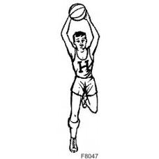 F8047 Basketballer