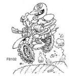 F8102 Dirt Biker