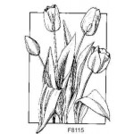 F8115 Tulips