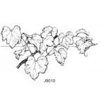 J9010 Grape Vine